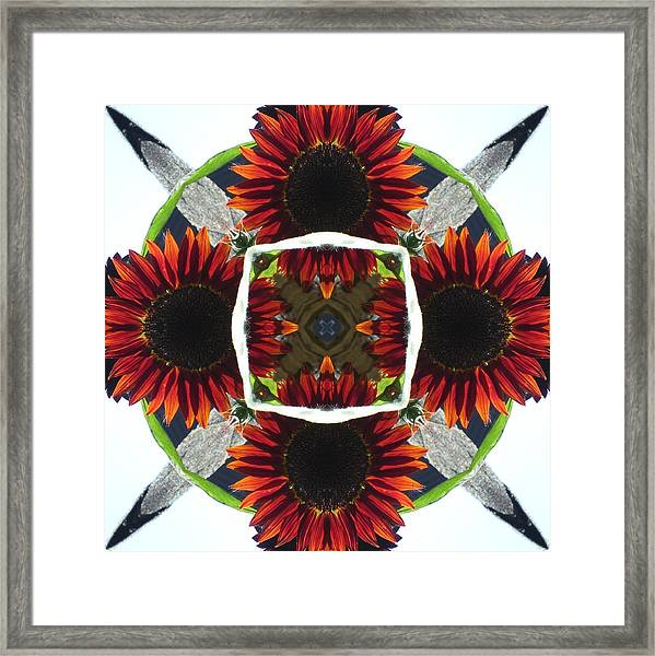 Red Sunflower And Feather Framed Print
