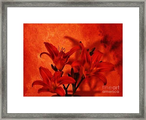 Red Tigerlilies Framed Print by Marsha Heiken