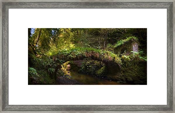 Reelig Bridge And Grotto Framed Print