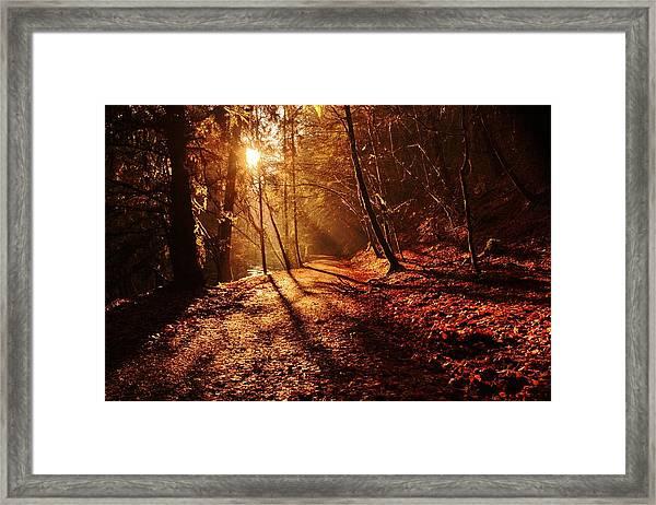 Reelig Sun Framed Print