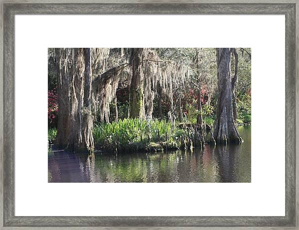 Reflection's At Magnolia Gardens Framed Print