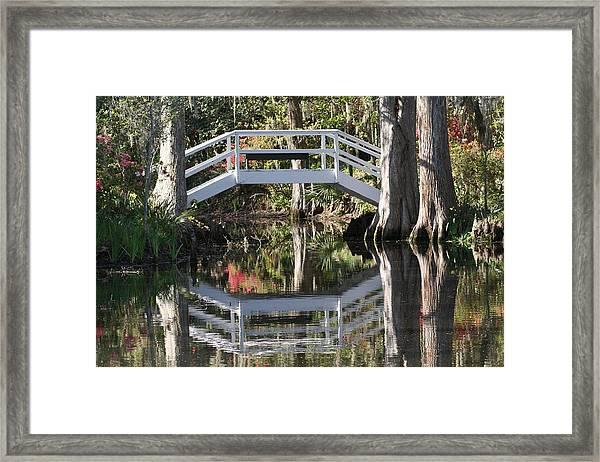 Reflection's Of Spring Framed Print
