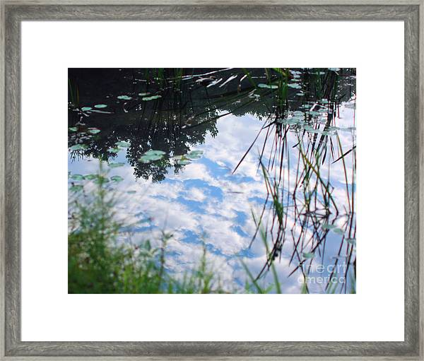 Reflections Of The Sky Framed Print