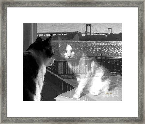 Reggie Reflected Framed Print