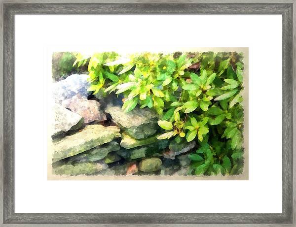 Rhodas And Stones Framed Print
