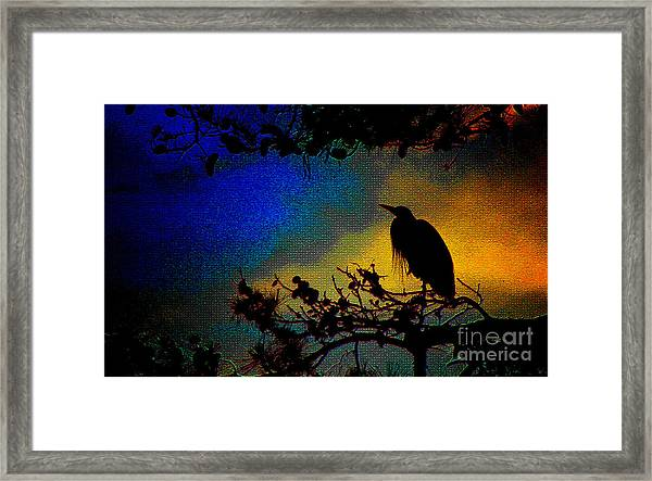 Richly Colored Night  Framed Print