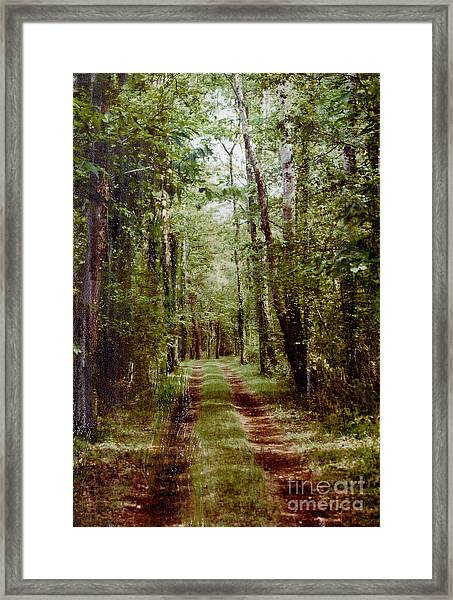 Road To Anywhere Framed Print