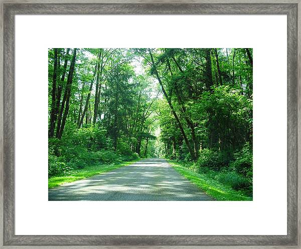 Road To La Push Framed Print