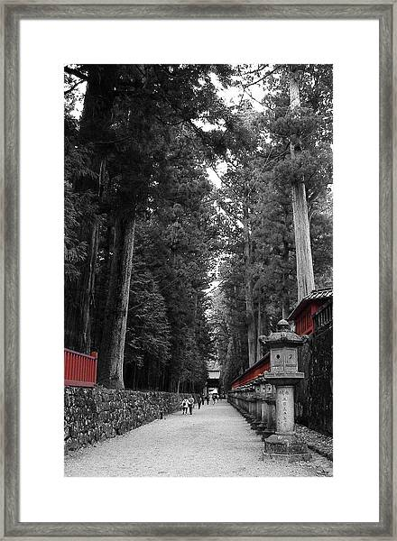 Road To The Temple Framed Print