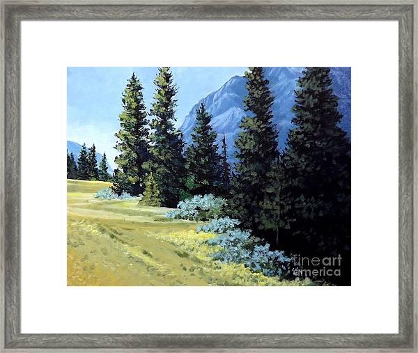Rocky Mountain Meadow Framed Print