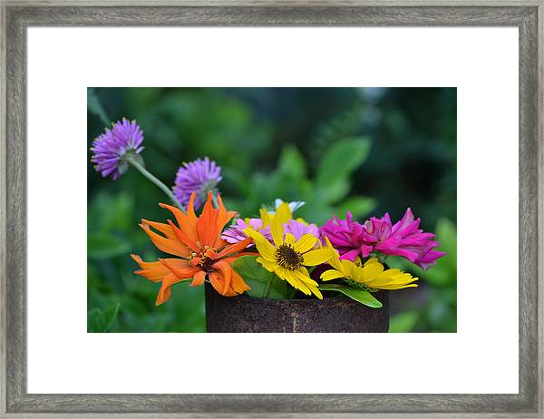 Rusted Beauty Framed Print