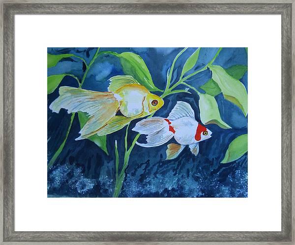 Ryukin Framed Print