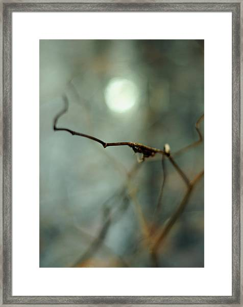 Sail To The Moon Framed Print