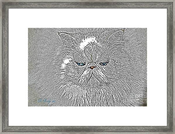 Sam I Am  Framed Print