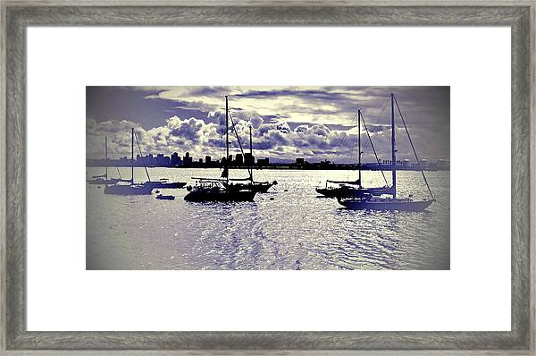 San Diego View From Shelter Island IIi Framed Print