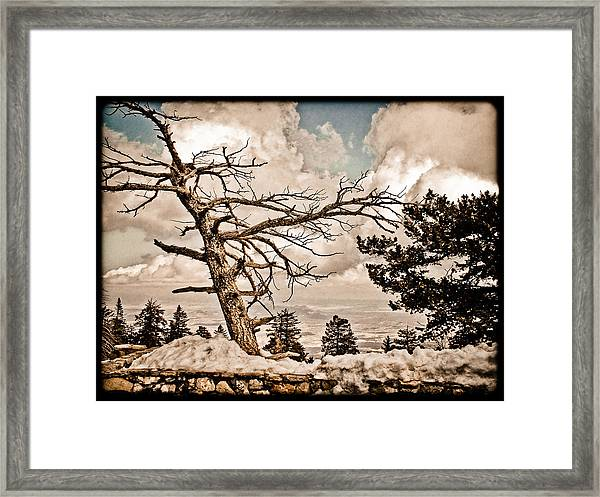 Albuquerque, New Mexico - Sandia Crest Framed Print