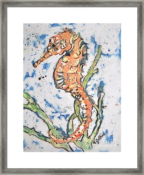Seahorse Framed Print by Norma Gafford
