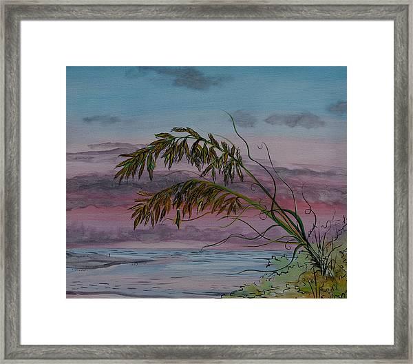 Seaoats Framed Print