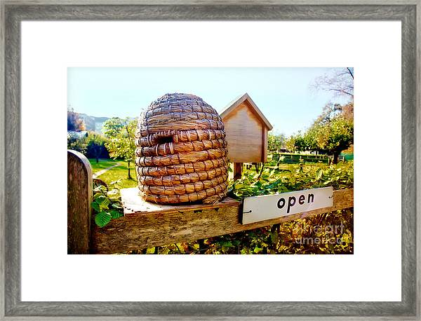 Seasonal Bee Farm  Framed Print