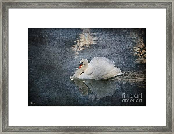 Seeing Off The Day Framed Print