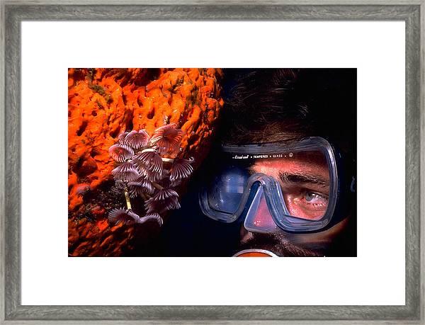 Self Portrait On Snowfields Reef Framed Print