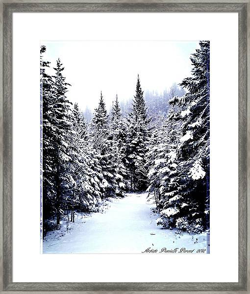 Serenity From Micoua  Framed Print