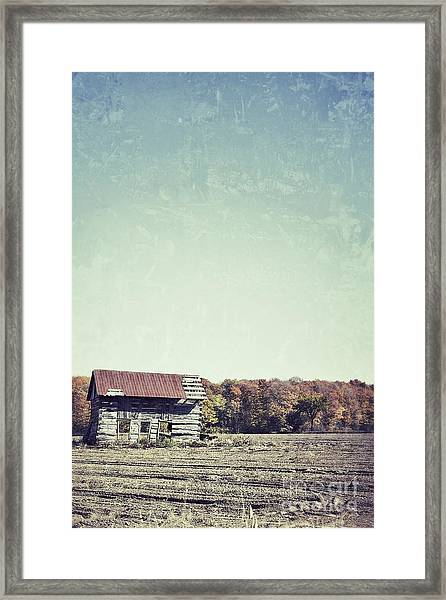 Shackn Up Framed Print