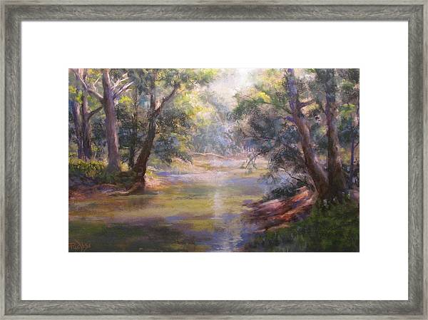 Shimmering Stream Framed Print