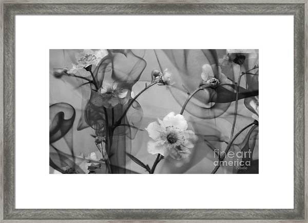 Silent Grief Framed Print