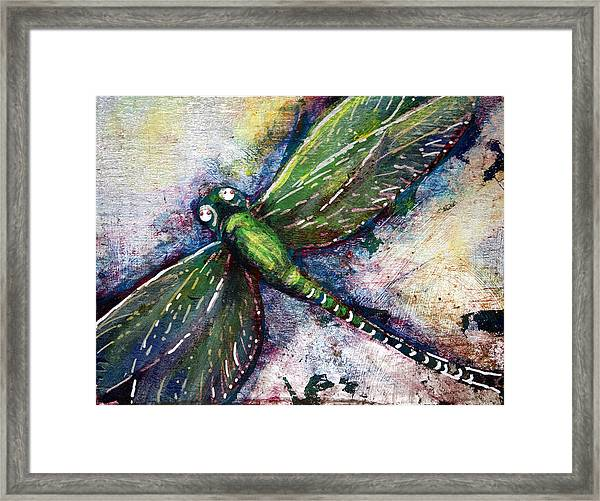 Silver Dragonfly Framed Print