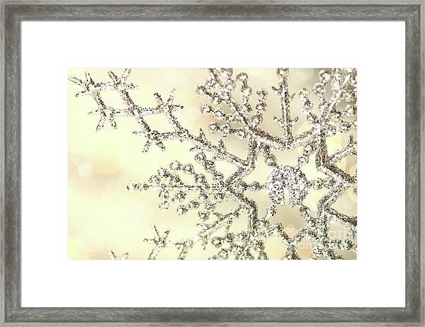 Silver Snowflake Framed Print