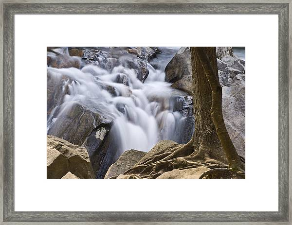 Sinks Cascade And Tree Framed Print