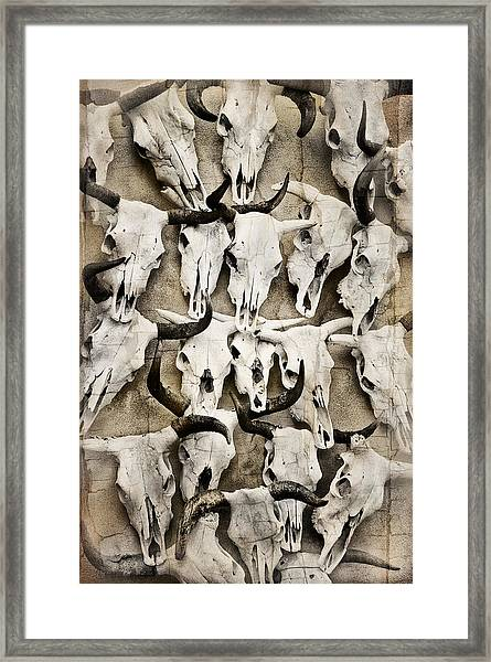 Skull Art Framed Print