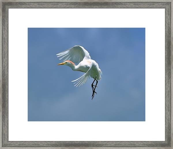 Sky Dancing Framed Print