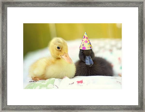 Slumber Party Framed Print