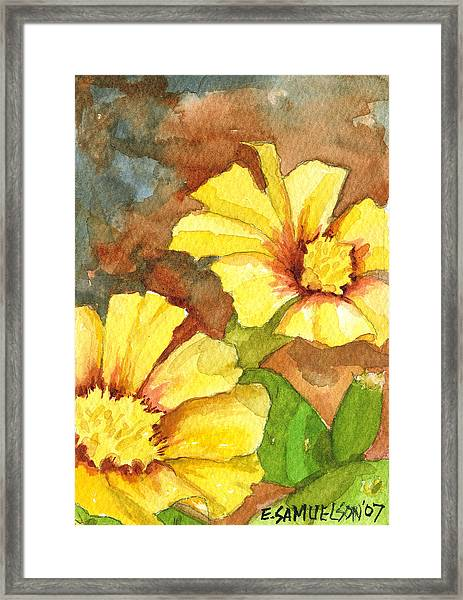 Small Yellow Flowers Framed Print