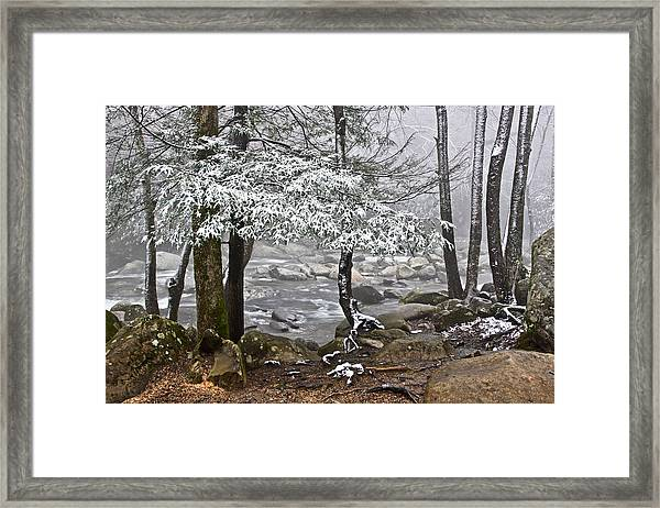 Smoky Mountain Stream Framed Print