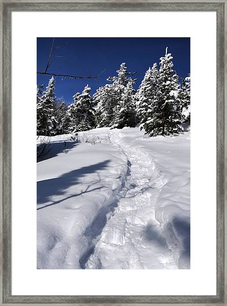 Snowshoe Trail Framed Print