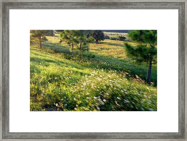 Sogno Campo Framed Print