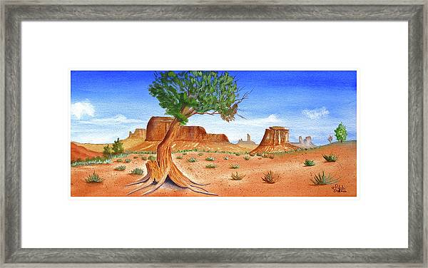 Somewhere In The Southwest Framed Print
