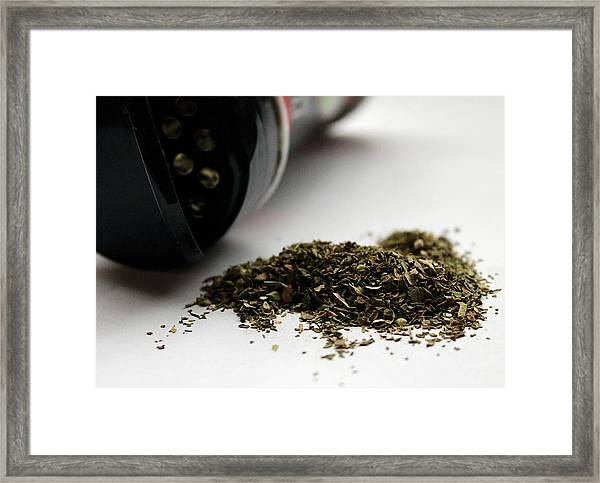 Spilled Seasoning Framed Print