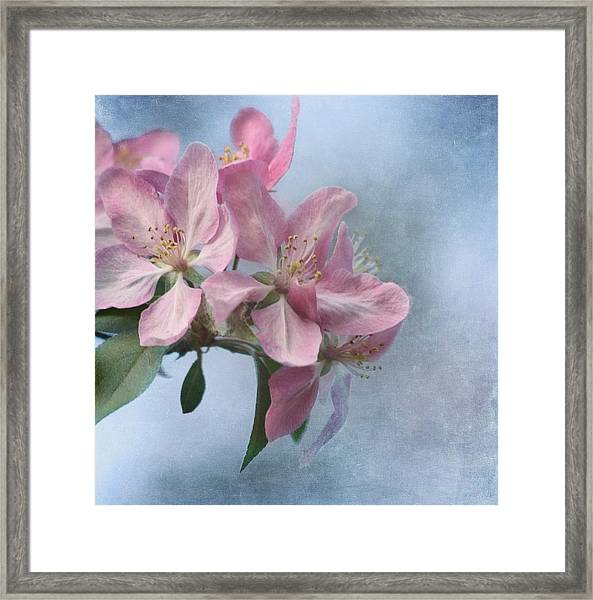 Spring Blossoms For The Cure Framed Print