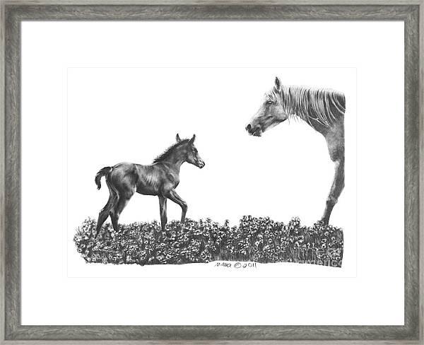 Spring Delights Framed Print