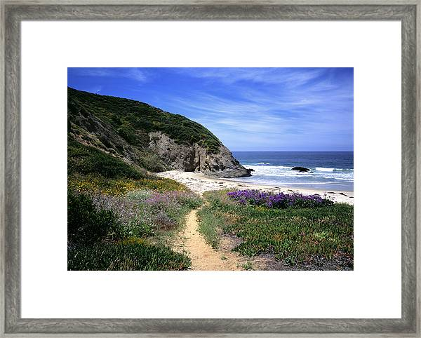 Springtime Trail  Dana Point Headlands Framed Print