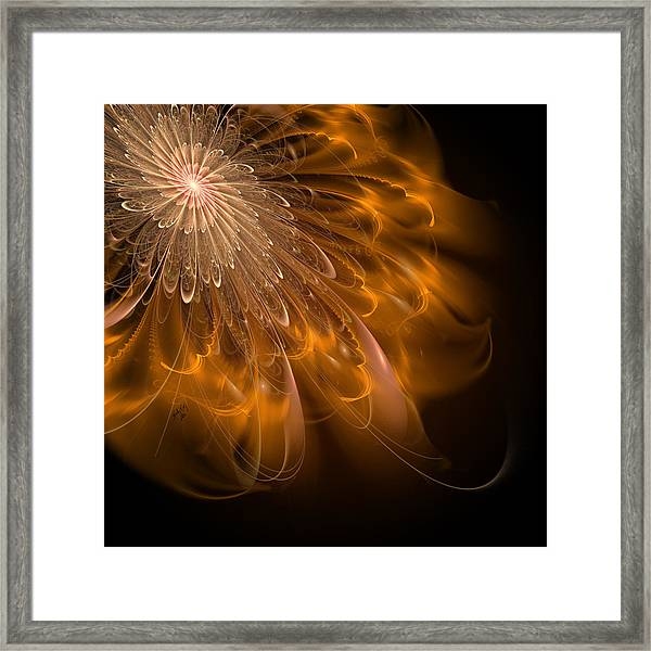 Spun Gold And Lace Framed Print