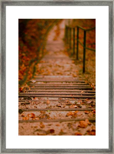 Stairs Framed Print by Vail Joy