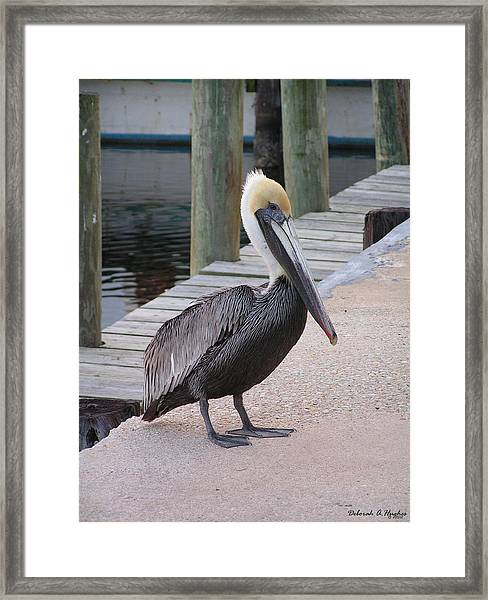 Stand Off Framed Print