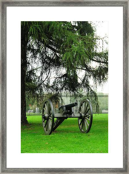 Standing Guard Framed Print