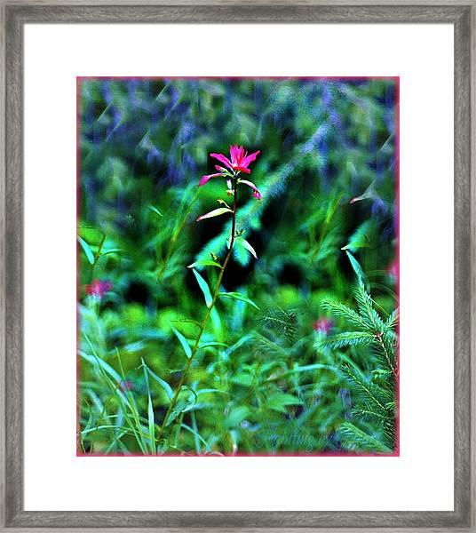 Stands Alone Framed Print