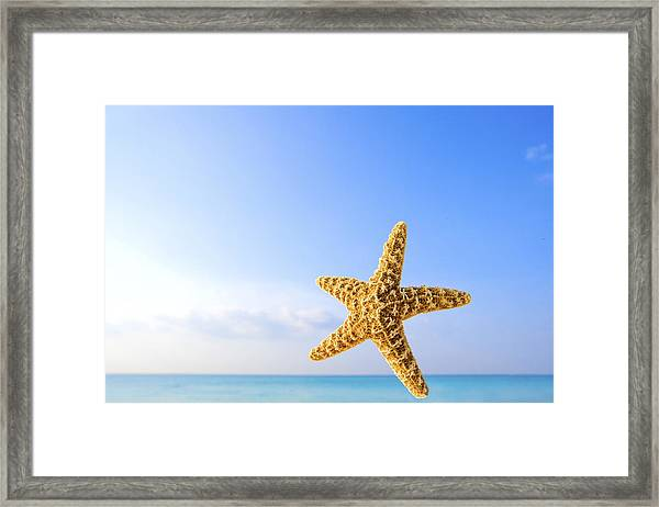 Starfish In Front Of The Ocean Framed Print
